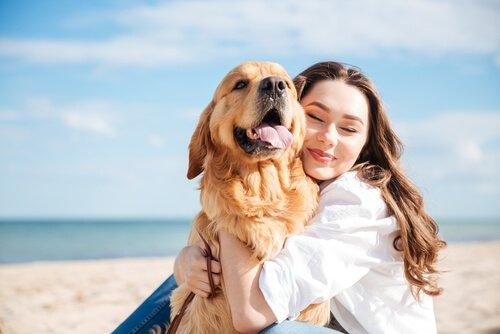 köpekler duygusal mı, köpeklerin hisleri kuvvetli mi, köpekler insanlara duygusal bağ ile mi yaklaşıyor